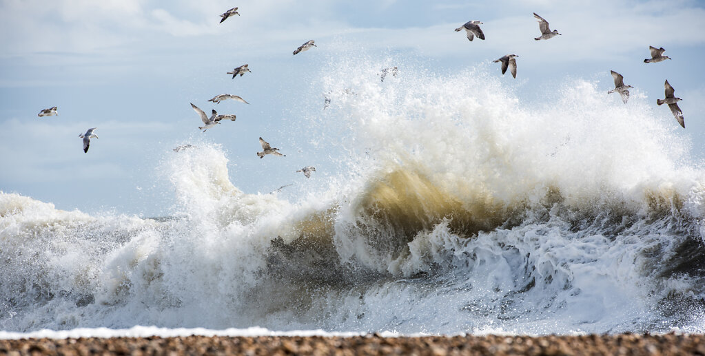 Fury Of The Sea